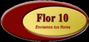 logo-flor10